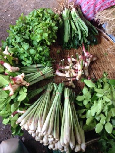 lemongrass, herbs, galangal (similar to ginger)