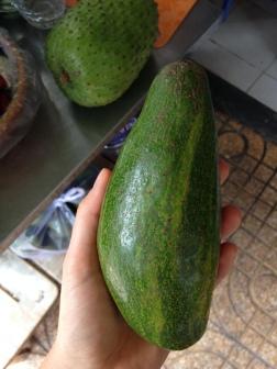 huge avocados