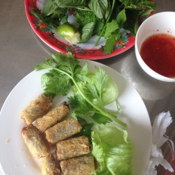 veggie spring rolls, fried