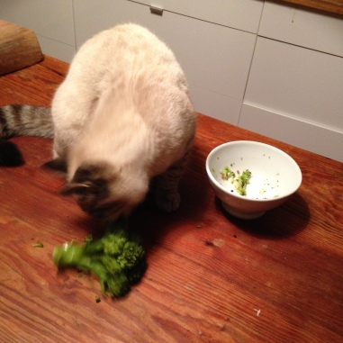 Sam loves Broccoli