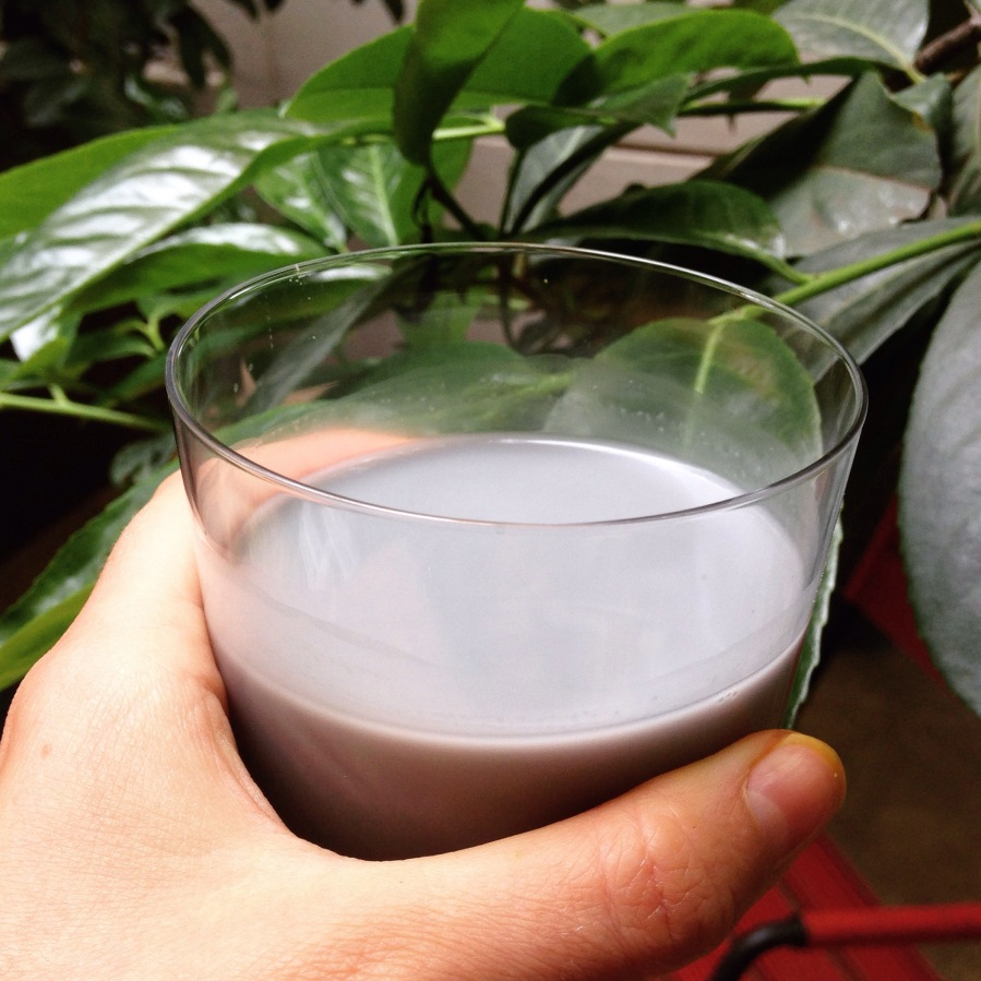Black Sesame Seed Milk