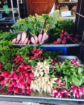 different varieties of radishes