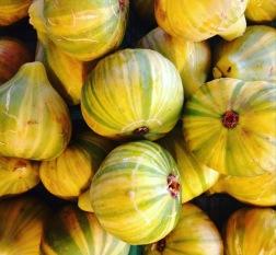 Panache figs