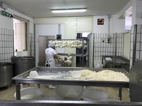 Caciocavallo in the making